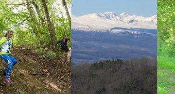 Trail de l'Améthyste