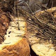 Jambon au foin d'Auvergne