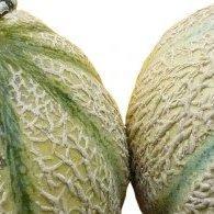 Confiture d'écorces de melon